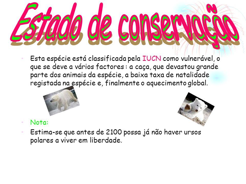 Estado de conservação