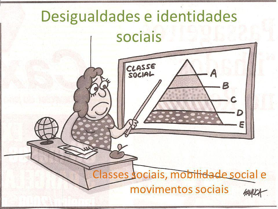 Desigualdades e identidades sociais
