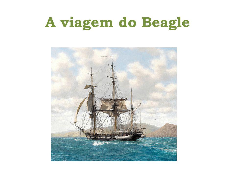 A viagem do Beagle