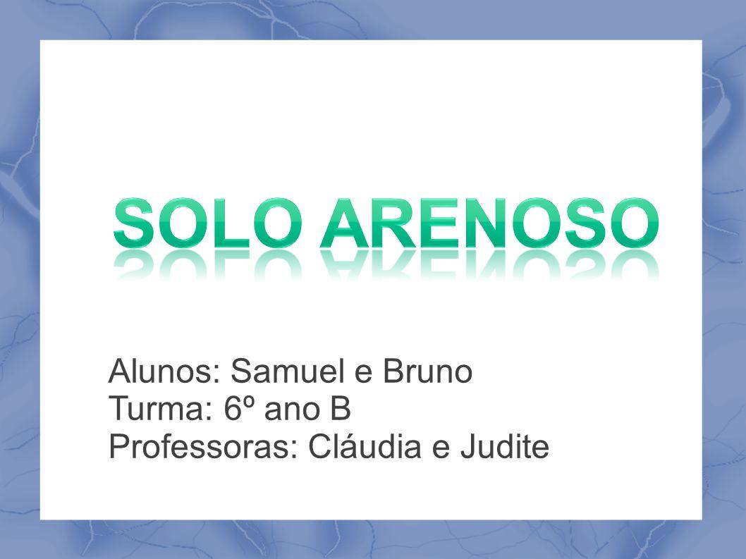 solo arenoso Alunos: Samuel e Bruno Turma: 6º ano B