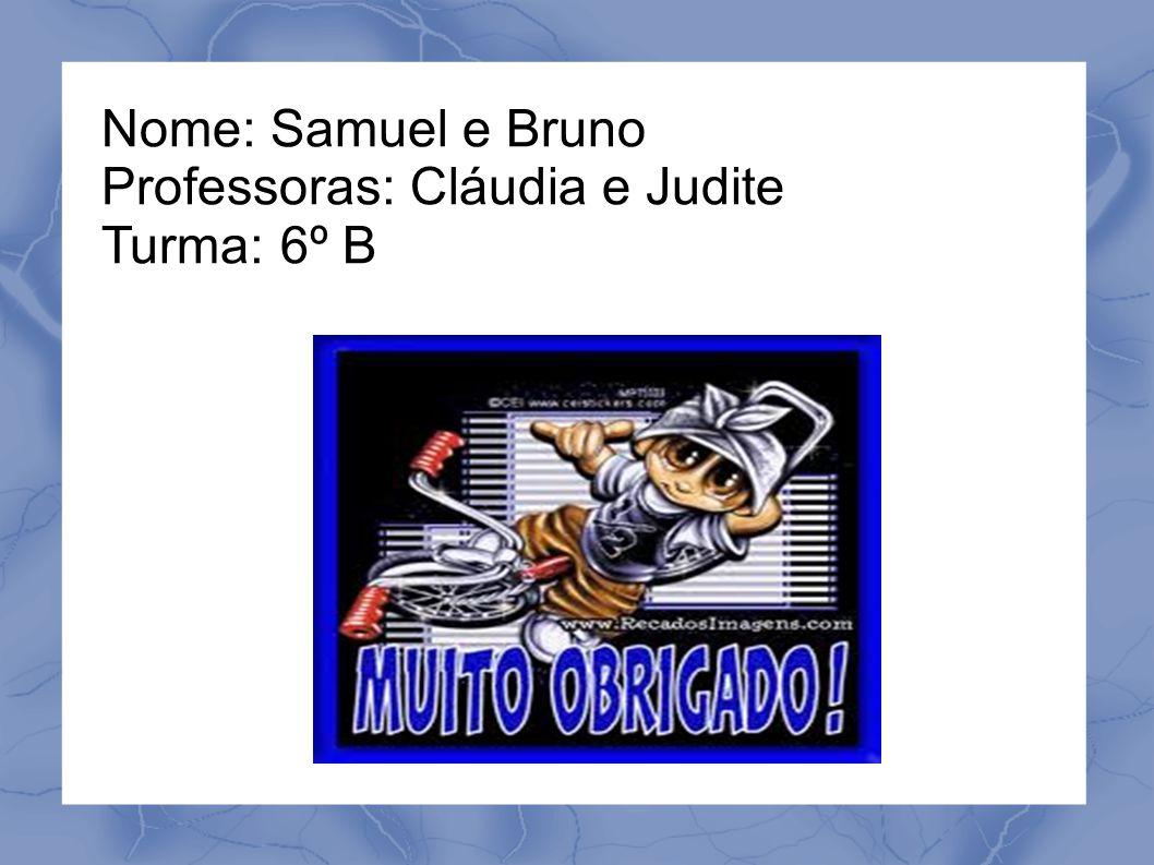 Nome: Samuel e Bruno Professoras: Cláudia e Judite Turma: 6º B