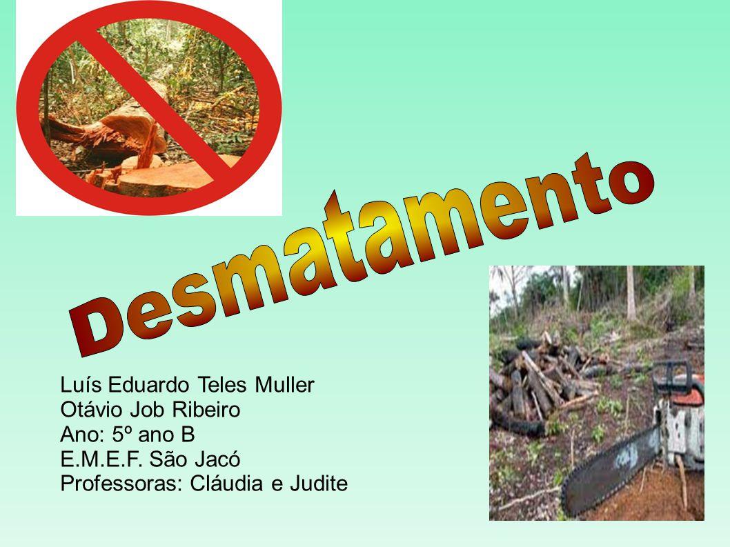Desmatamento Luís Eduardo Teles Muller Otávio Job Ribeiro