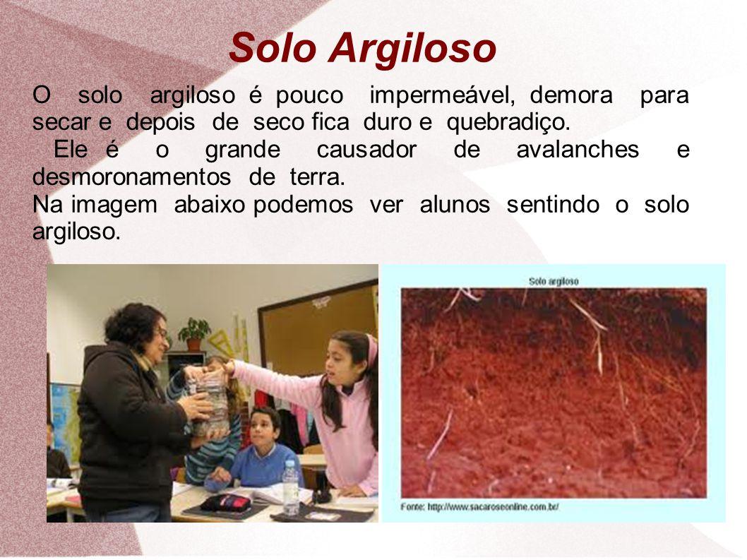 Solo Argiloso O solo argiloso é pouco impermeável, demora para secar e depois de seco fica duro e quebradiço.