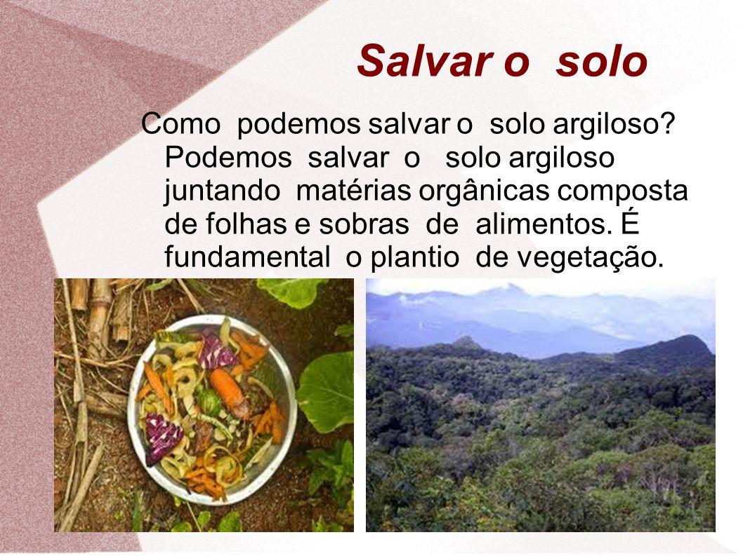 Salvar o solo