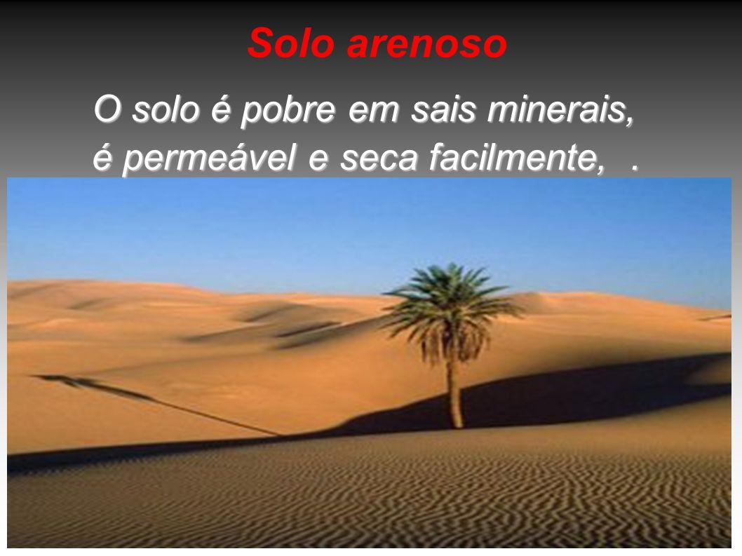 Solo arenoso O solo é pobre em sais minerais, é permeável e seca facilmente, .