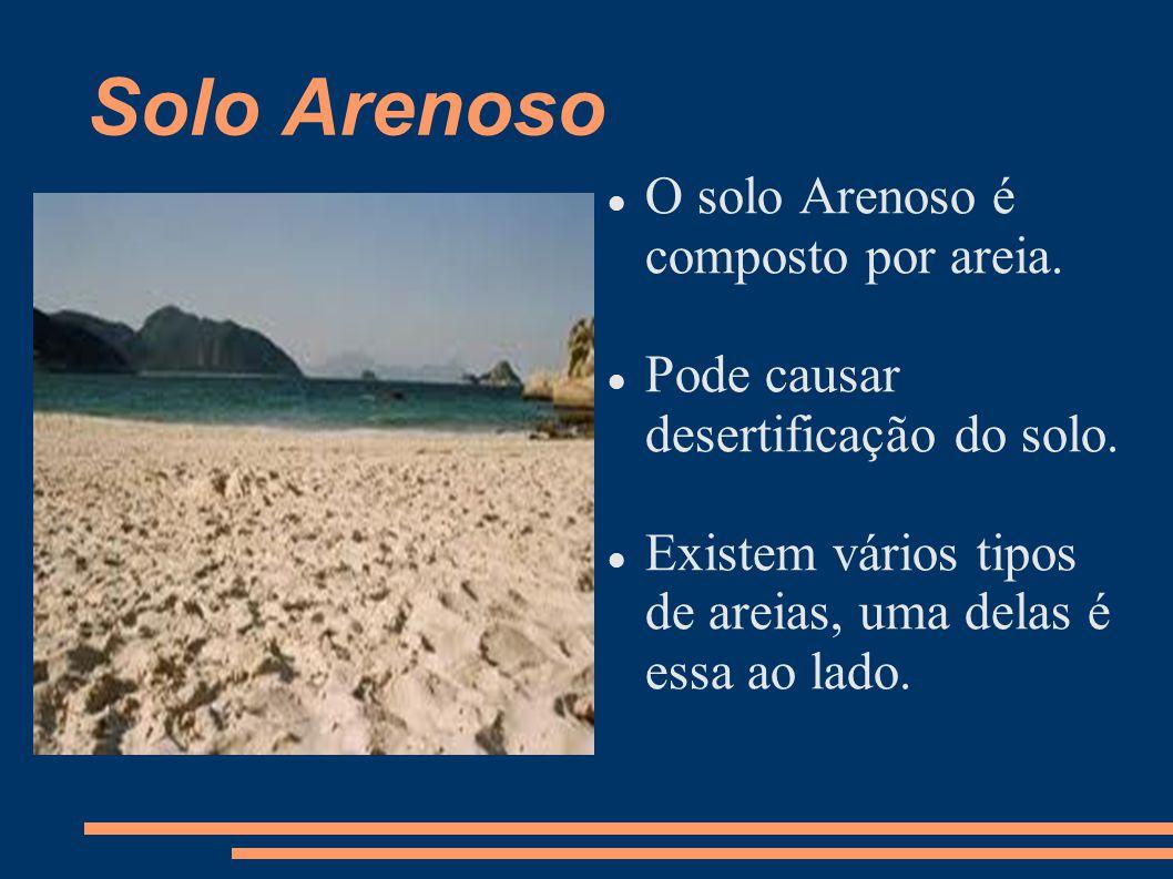Solo Arenoso O solo Arenoso é composto por areia.
