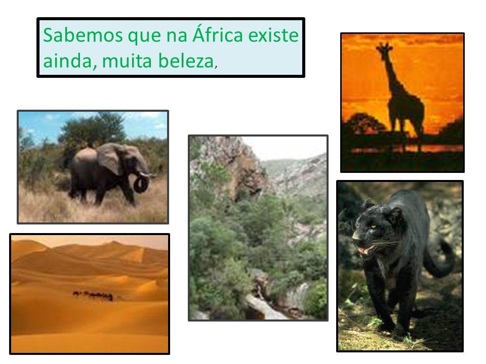 Sabemos que na África existe ainda, muita beleza,