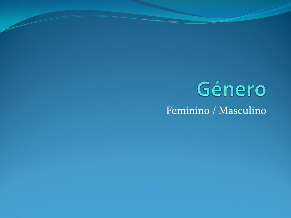 Género Feminino / Masculino