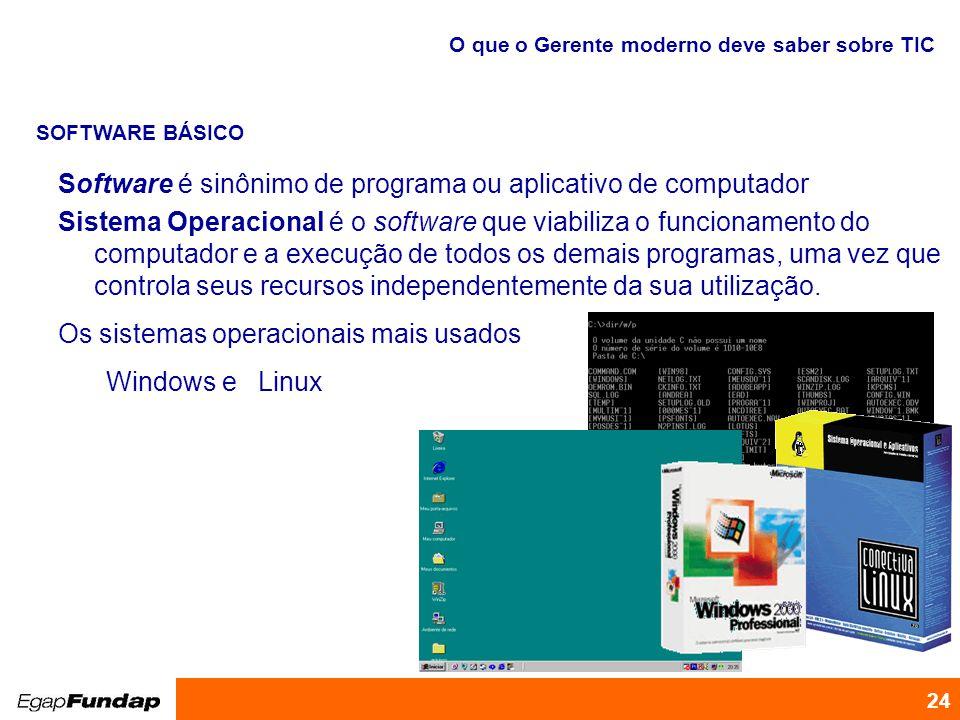 Software é sinônimo de programa ou aplicativo de computador