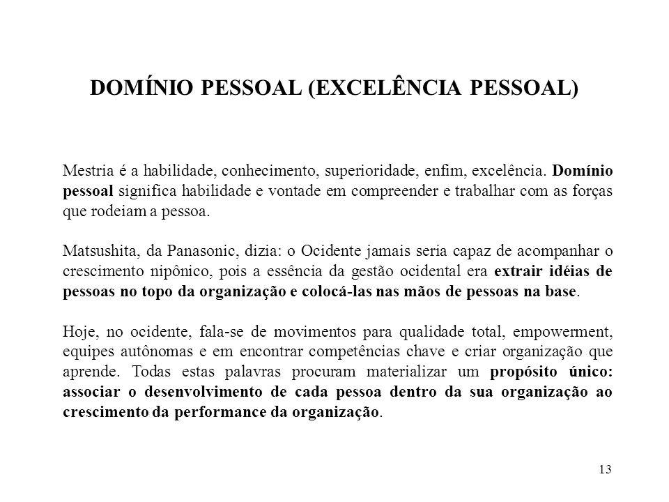 DOMÍNIO PESSOAL (EXCELÊNCIA PESSOAL)
