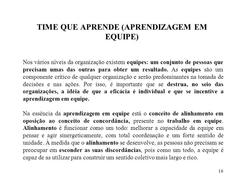TIME QUE APRENDE (APRENDIZAGEM EM EQUIPE)