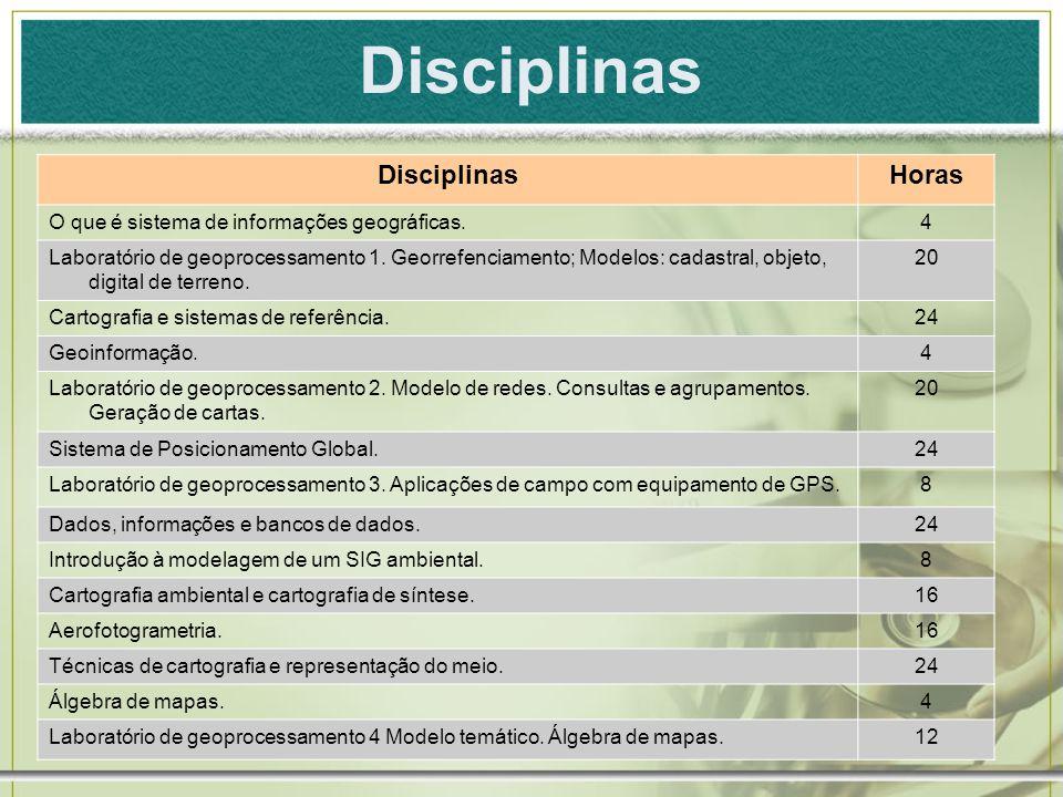 Disciplinas Disciplinas Horas
