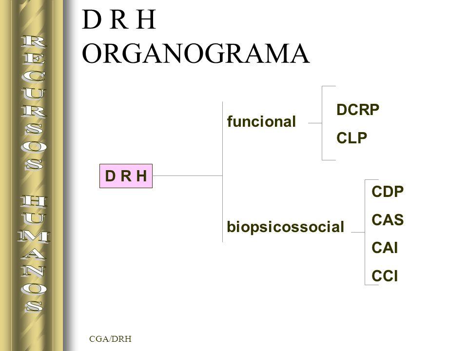 D R H ORGANOGRAMA RECURSOS HUMANOS DCRP CLP funcional D R H CDP CAS