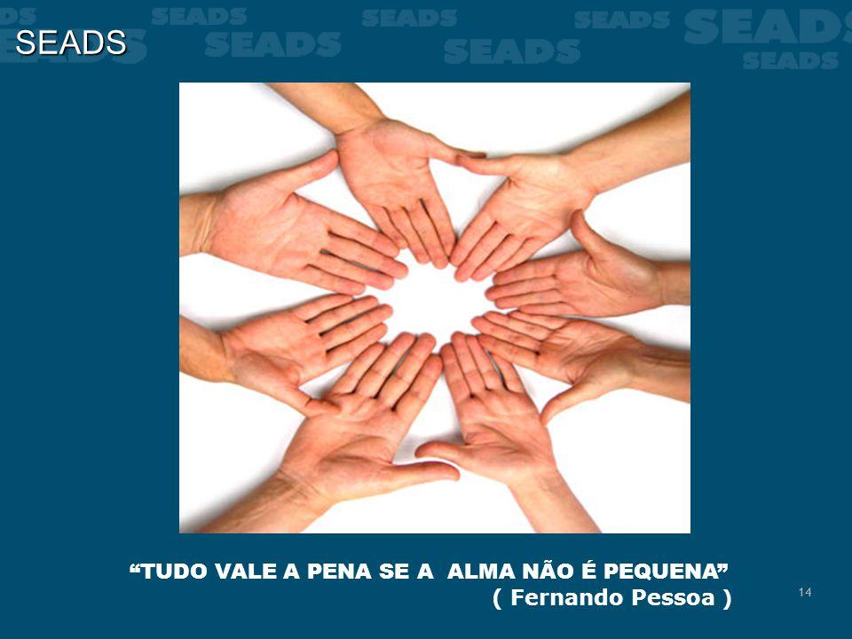 SEADS TUDO VALE A PENA SE A ALMA NÃO É PEQUENA ( Fernando Pessoa )