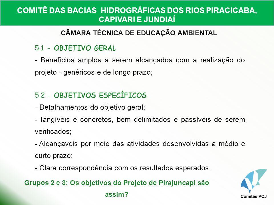 Grupos 2 e 3: Os objetivos do Projeto de Pirajuncapi são assim