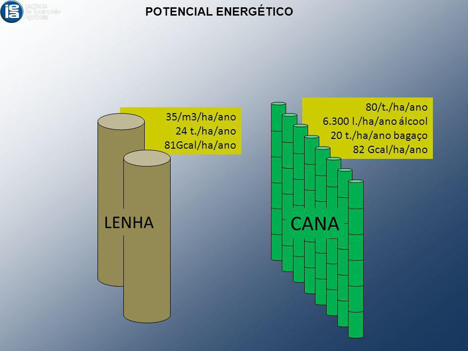 CANA LENHA POTENCIAL ENERGÉTICO 80/t./ha/ano 6.300 l./ha/ano álcool