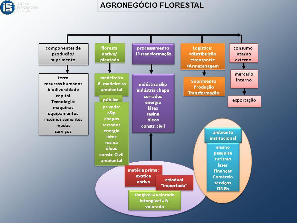 AGRONEGÓCIO FLORESTAL