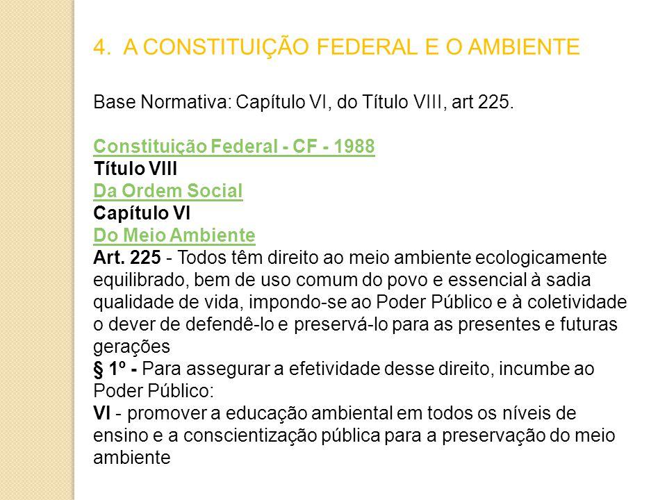 4. A CONSTITUIÇÃO FEDERAL E O AMBIENTE