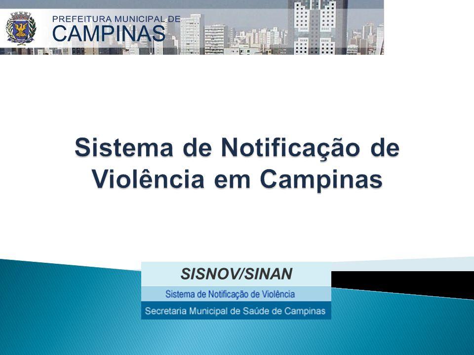 Sistema de Notificação de Violência em Campinas