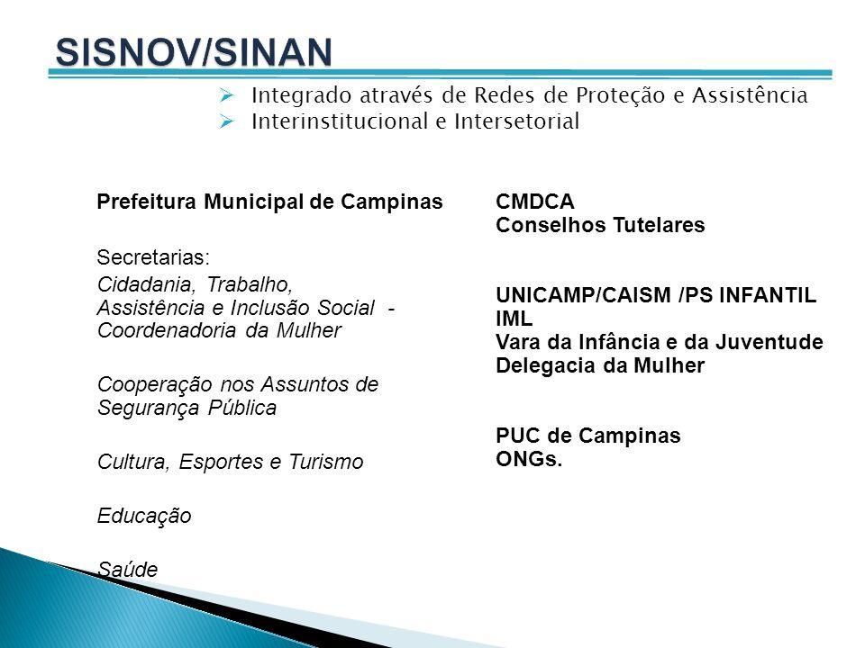 SISNOV/SINAN Integrado através de Redes de Proteção e Assistência
