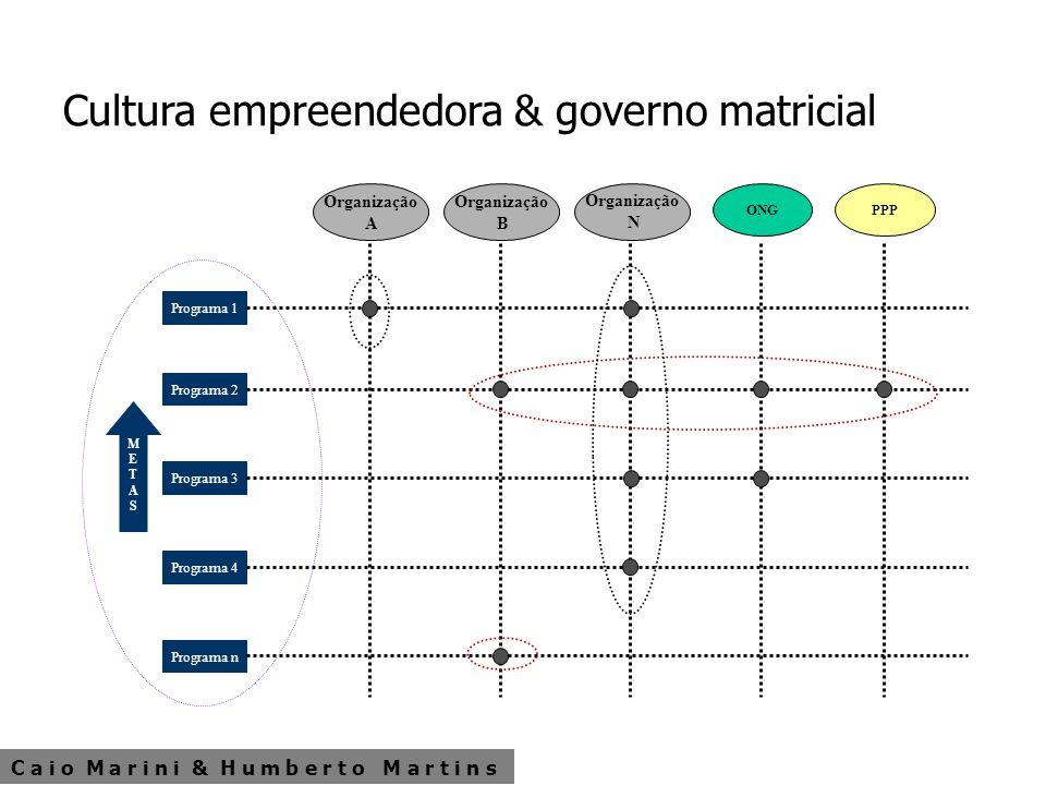 Cultura empreendedora & governo matricial