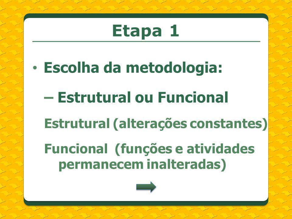 Etapa 1 Escolha da metodologia: – Estrutural ou Funcional