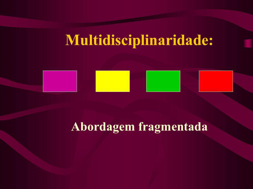 Multidisciplinaridade: Abordagem fragmentada