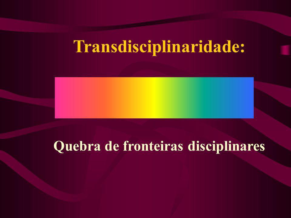 Transdisciplinaridade: Quebra de fronteiras disciplinares
