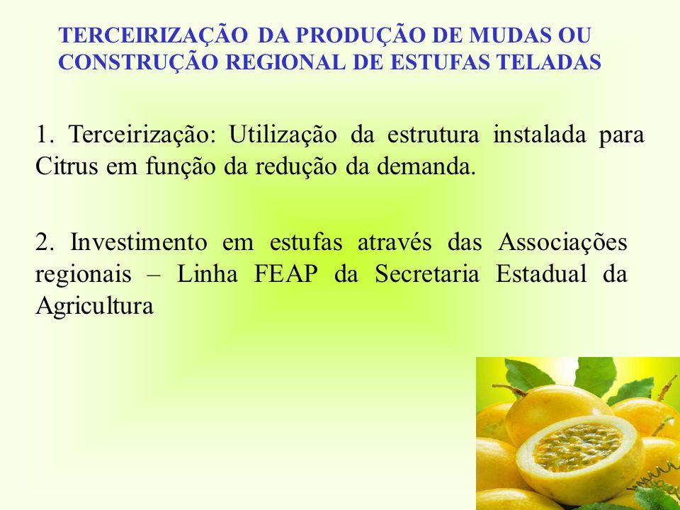 TERCEIRIZAÇÃO DA PRODUÇÃO DE MUDAS OU CONSTRUÇÃO REGIONAL DE ESTUFAS TELADAS