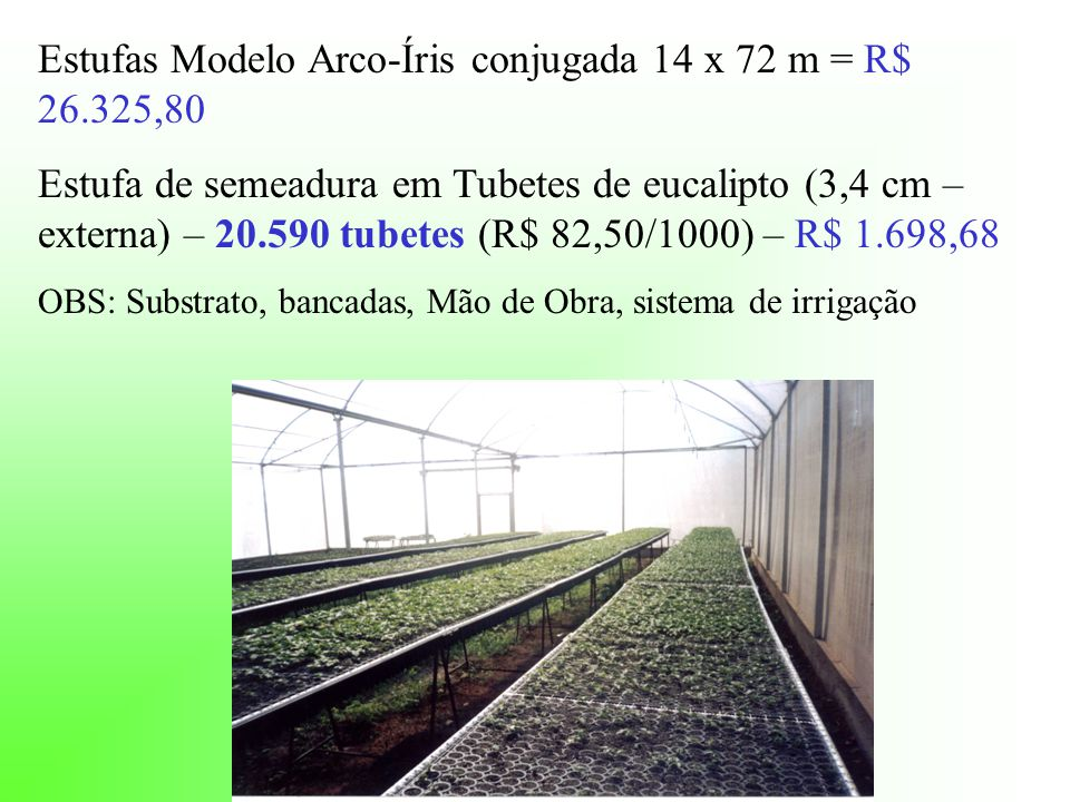 Estufas Modelo Arco-Íris conjugada 14 x 72 m = R$ 26.325,80