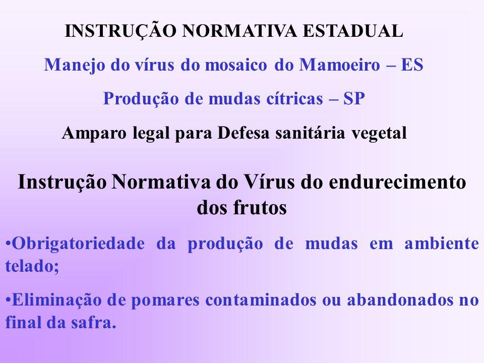 Instrução Normativa do Vírus do endurecimento dos frutos