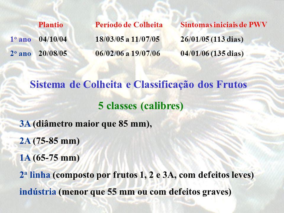 Sistema de Colheita e Classificação dos Frutos
