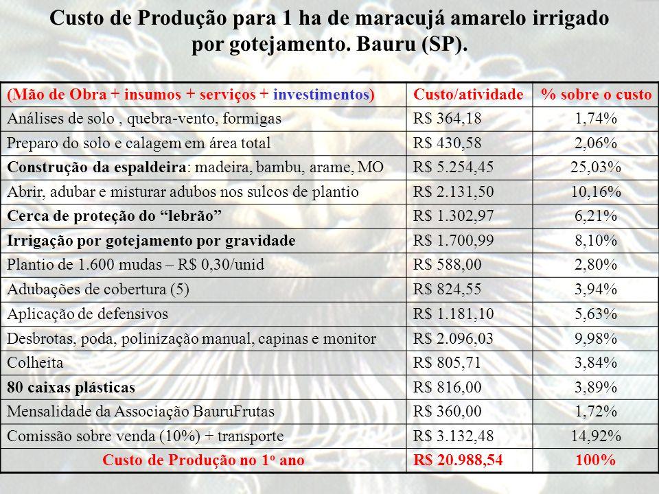 Custo de Produção no 1o ano