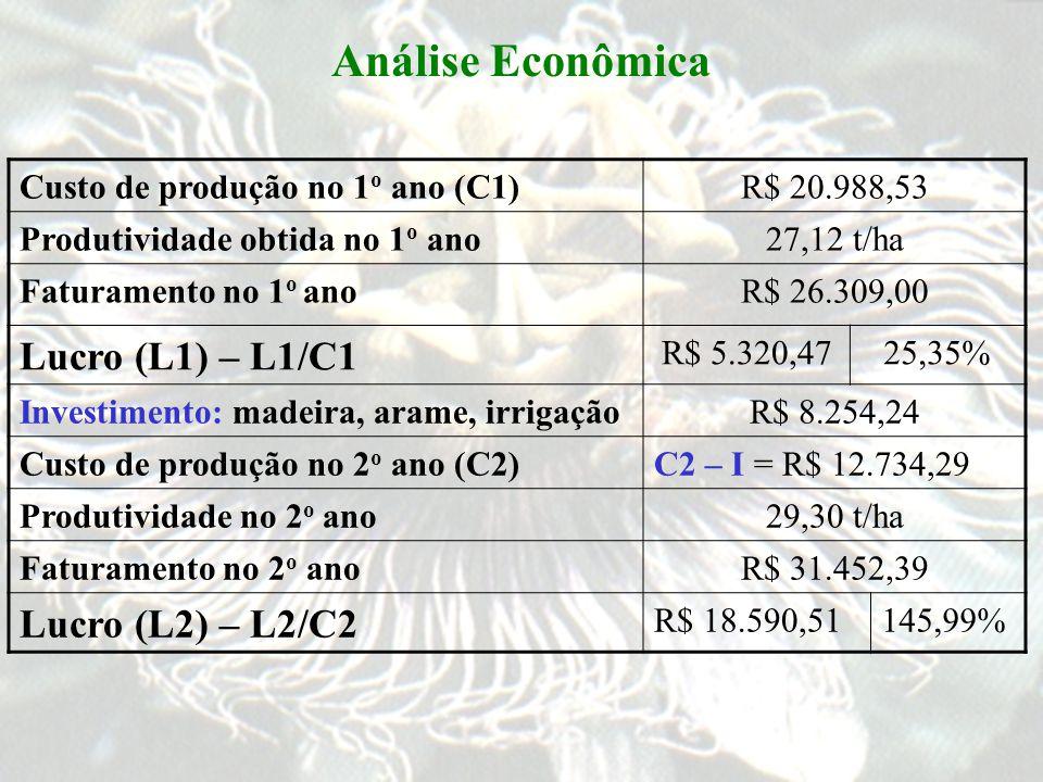Análise Econômica Lucro (L1) – L1/C1 Lucro (L2) – L2/C2