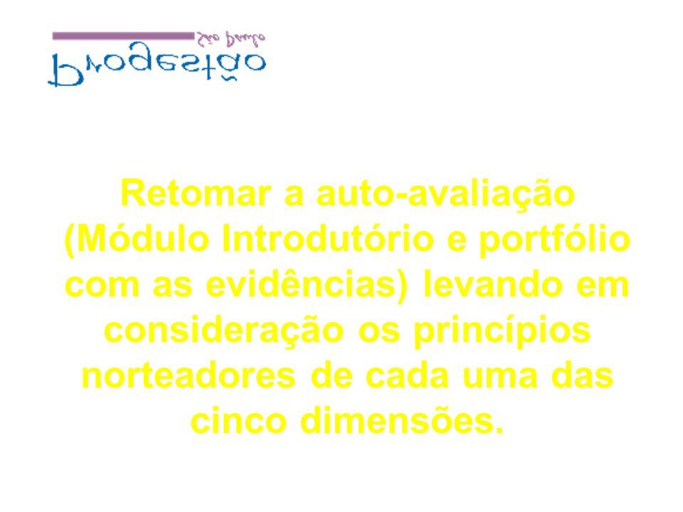 Retomar a auto-avaliação (Módulo Introdutório e portfólio com as evidências) levando em consideração os princípios norteadores de cada uma das cinco dimensões.