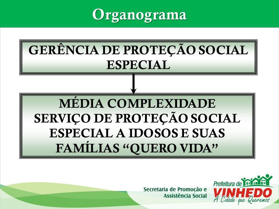 GERÊNCIA DE PROTEÇÃO SOCIAL ESPECIAL