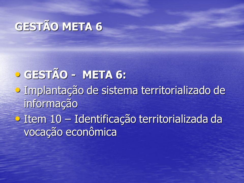 GESTÃO META 6 GESTÃO - META 6: Implantação de sistema territorializado de informação.