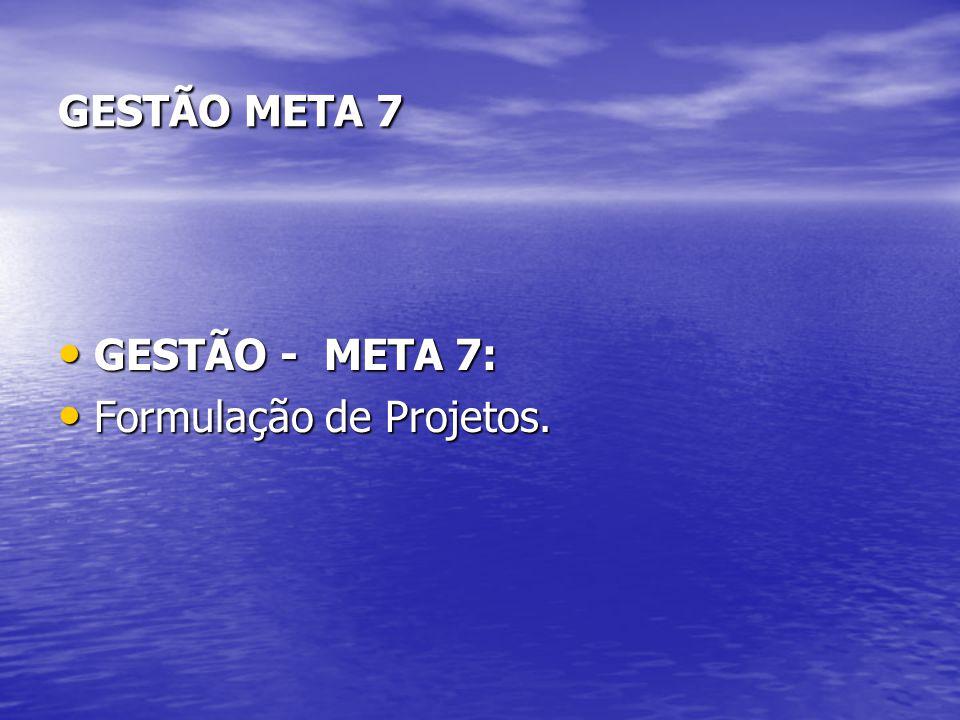 GESTÃO META 7 GESTÃO - META 7: Formulação de Projetos.