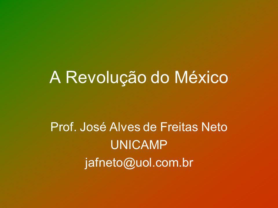 Prof. José Alves de Freitas Neto UNICAMP jafneto@uol.com.br