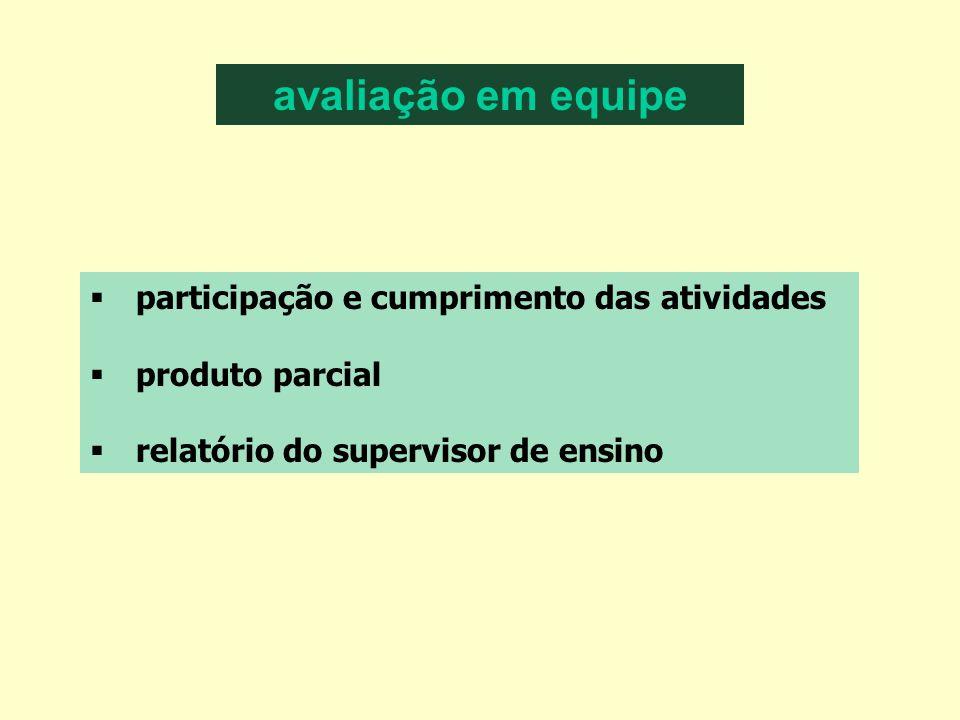 avaliação em equipe participação e cumprimento das atividades