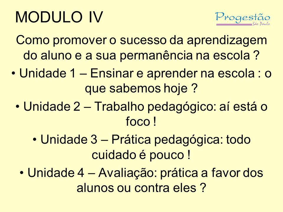 MODULO IV Como promover o sucesso da aprendizagem do aluno e a sua permanência na escola