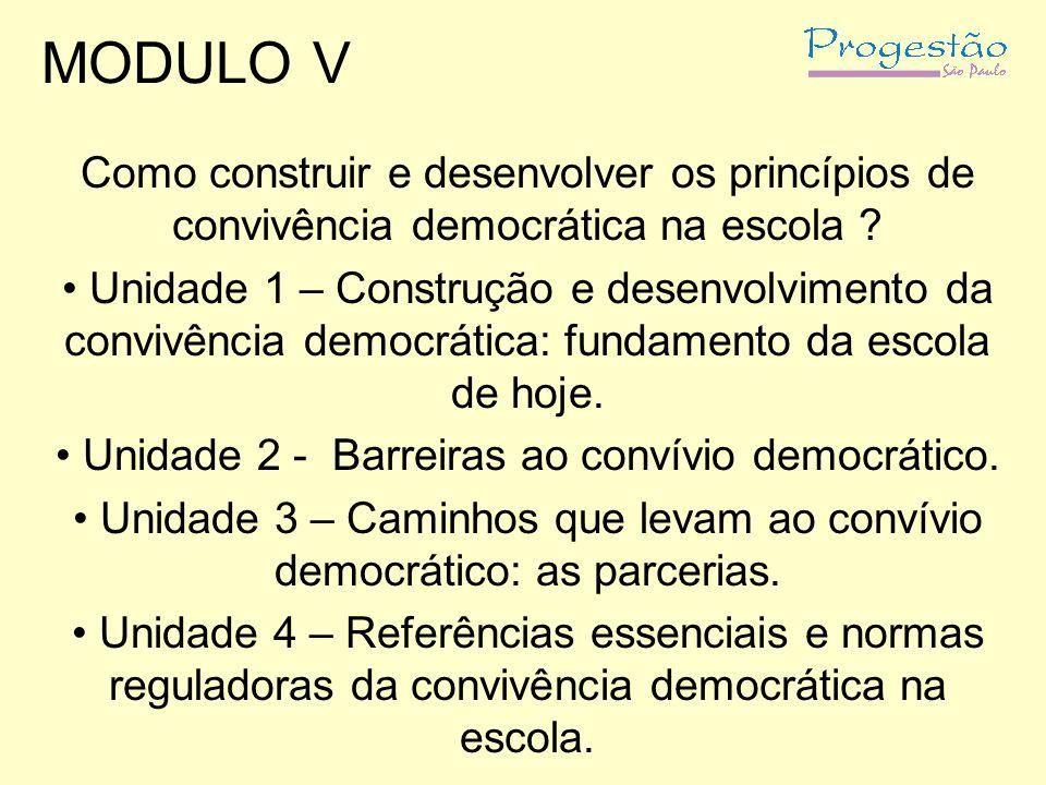 MODULO V Como construir e desenvolver os princípios de convivência democrática na escola