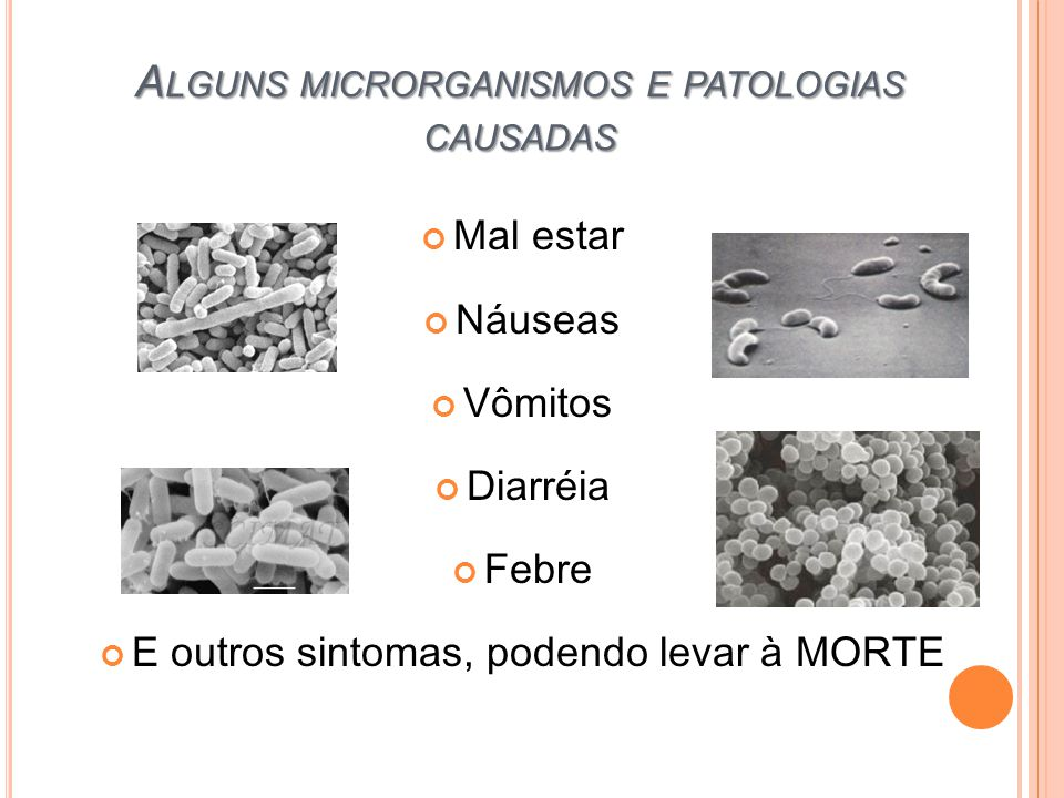 Alguns microrganismos e patologias causadas