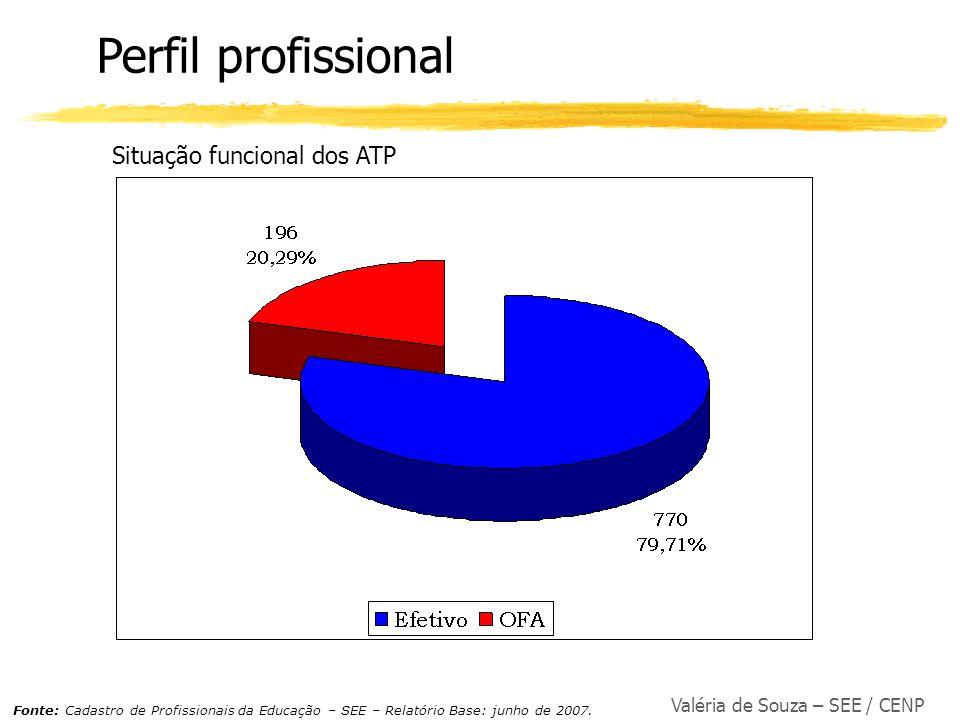 Perfil profissional Situação funcional dos ATP