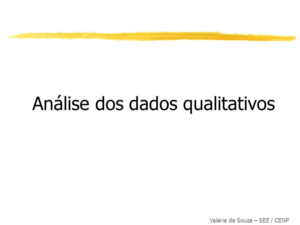 Análise dos dados qualitativos