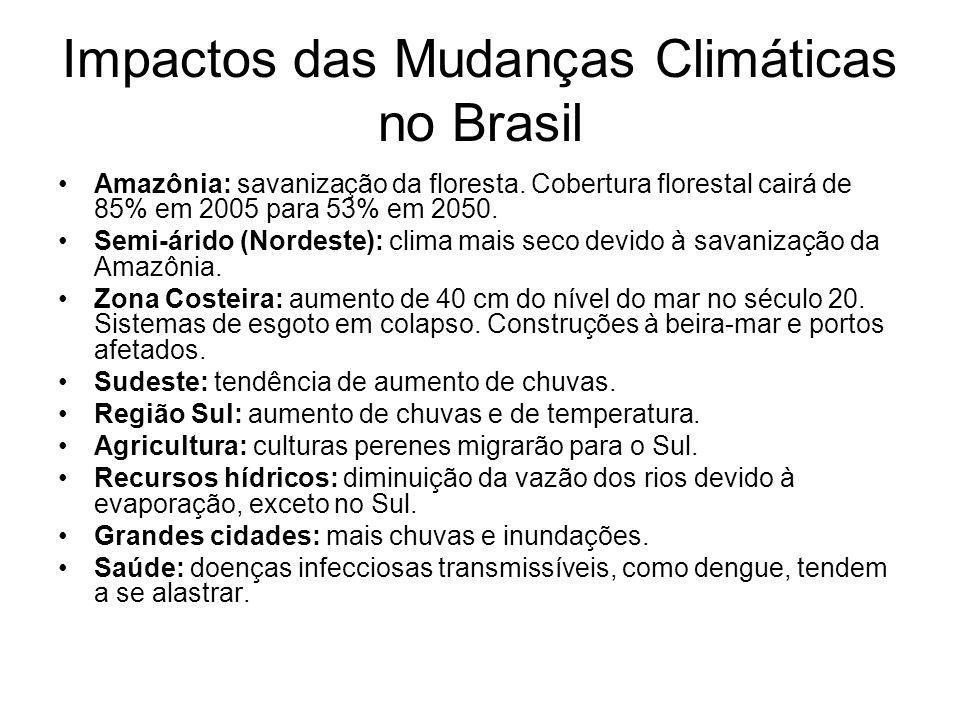 Impactos das Mudanças Climáticas no Brasil