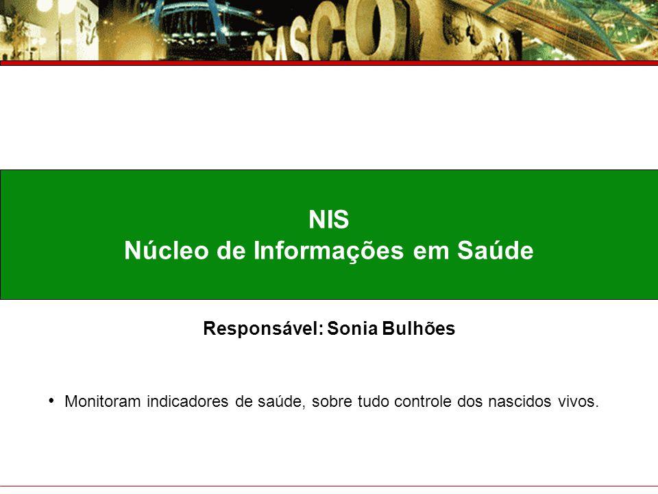 Núcleo de Informações em Saúde Responsável: Sonia Bulhões