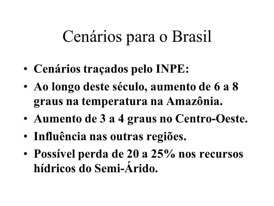 Cenários para o Brasil Cenários traçados pelo INPE: