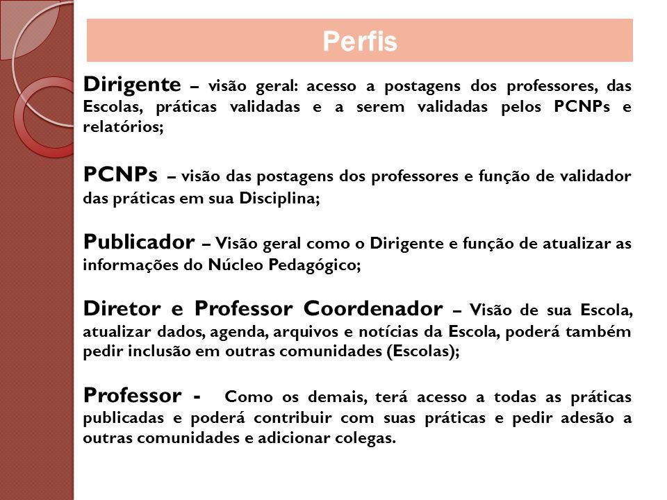 Perfis Dirigente – visão geral: acesso a postagens dos professores, das Escolas, práticas validadas e a serem validadas pelos PCNPs e relatórios;