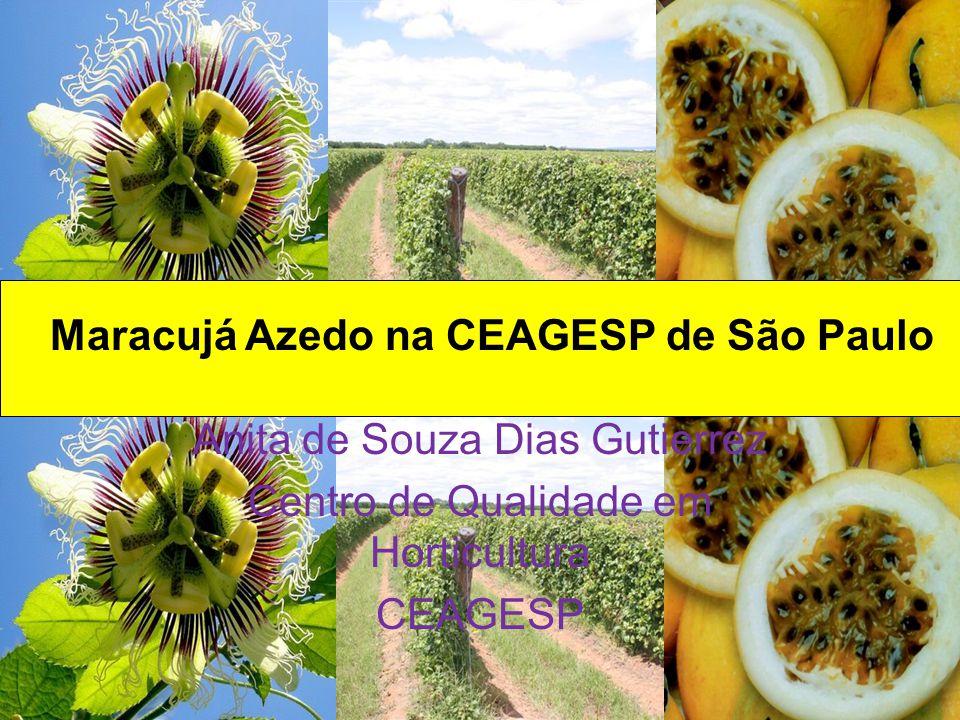 Maracujá Azedo na CEAGESP de São Paulo